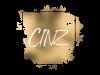 Logo ontwerp CINZ